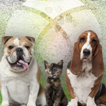 Friends for Life Pet Adoptions - Events - Unity of Houston