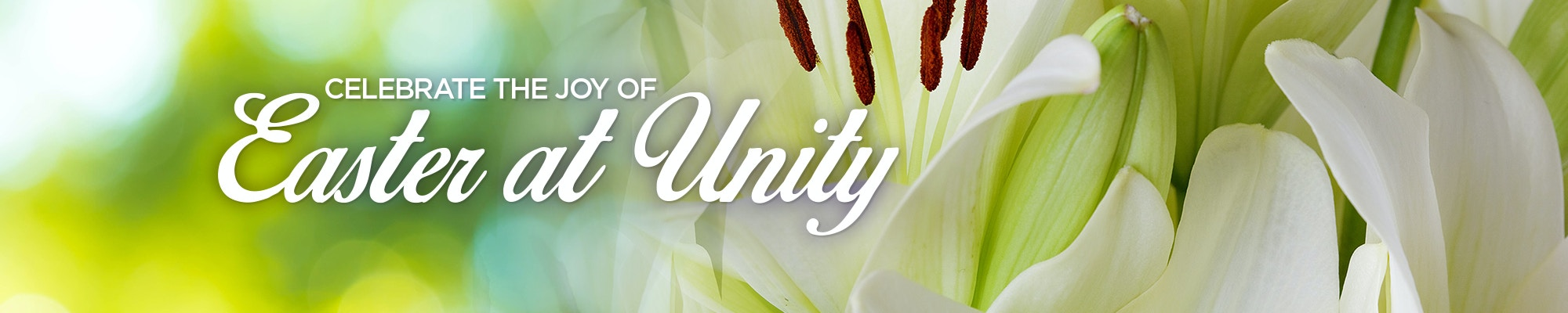 Unity Events